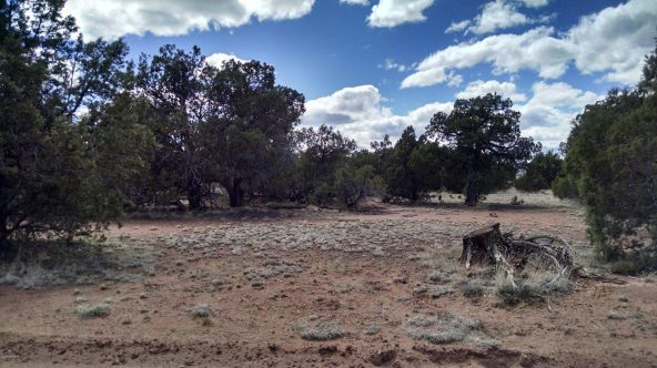 1852 Bull Hollow Rd., Show Low, AZ 85901 Photo 2