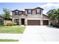 Home for sale: 2120 Landside Dr., Valrico, FL 33594