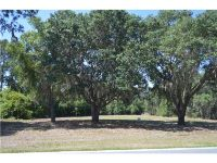 Home for sale: 414 Long And Winding Rd., Groveland, FL 34737