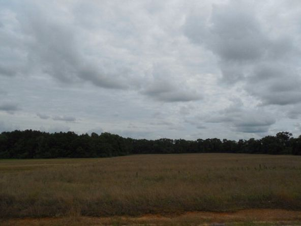 7.8acres Hardy Rd., Rehobeth, AL 36301 Photo 1
