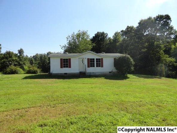 5219 Alabama Hwy. 40, Dutton, AL 35744 Photo 1