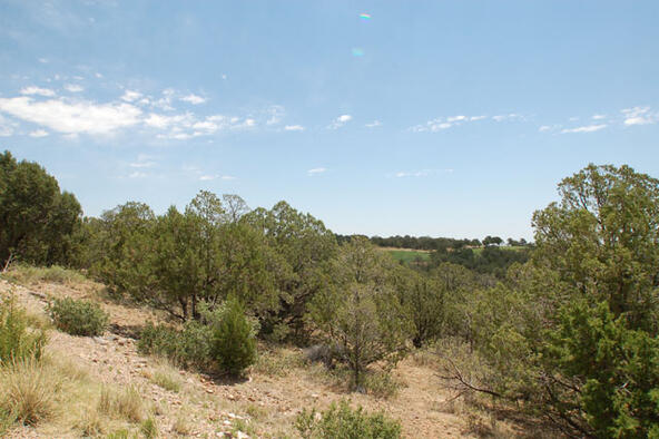 Lot 21 Spencer Rd., Alto, NM 88312 Photo 2