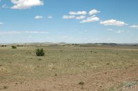 Home for sale: Tbd Backwoods Rd., Beulah, CO 81023
