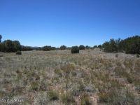 Home for sale: 0 E. Cougar Ridge Rd., Paulden, AZ 86334