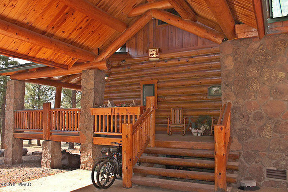 38721 State Route 373, Greer, AZ 85927 Photo 5