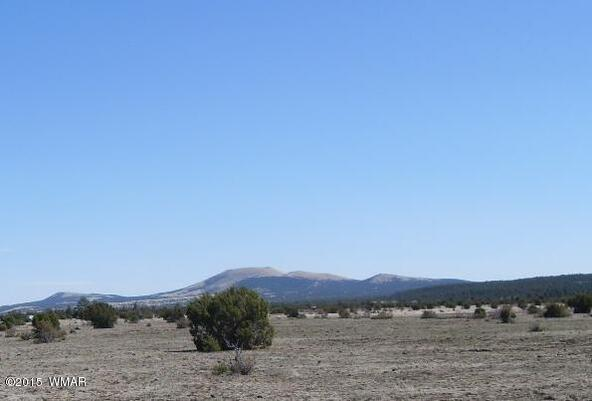 40.88 Acre Of 106-36-034-I, Vernon, AZ 85940 Photo 6