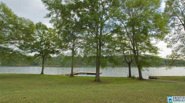 65 Bull Dog Cir., Cropwell, AL 35054 Photo 5