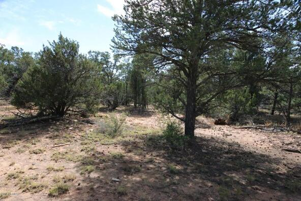 3311 Homestead Rd., Overgaard, AZ 85933 Photo 6