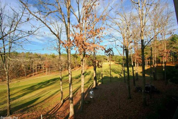 33 Princesa Dr., Hot Springs Village, AR 71909 Photo 69