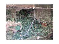 Home for sale: Revelation Rd., Pierson, FL 32180