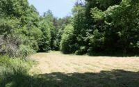 Home for sale: 1390 Bushy Head, Cherry Log, GA 30522