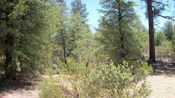 509 N. Chaparral Pines Dr., Payson, AZ 85541 Photo 19