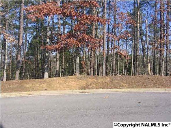 1025 Crooked Stick Ln., Guntersville, AL 35976 Photo 1