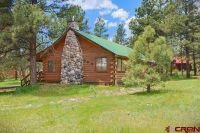 Home for sale: 283 Twincreek Cir., Pagosa Springs, CO 81147