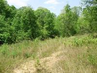 Home for sale: 200 Nugget Ridge, Dawsonville, GA 30534