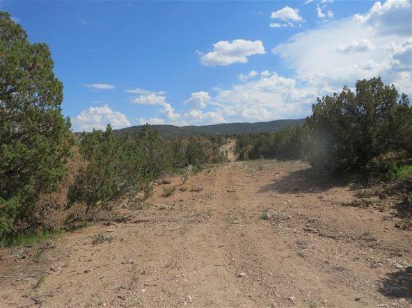 0 Pinon Park Trail, Sandia Park, NM 87047 Photo 21