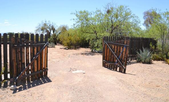 3162 S. Delfina, Tucson, AZ 85735 Photo 18