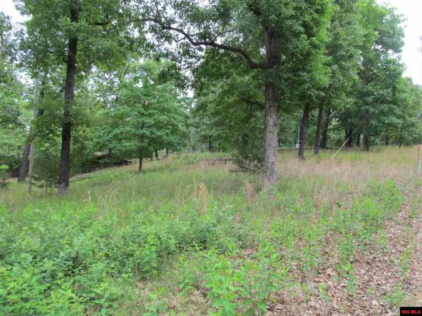 3053 Mc 8012, Yellville, AR 72687 Photo 10