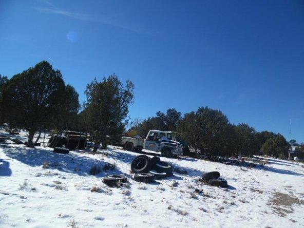459 Hardrock Rd., Seligman, AZ 86337 Photo 29
