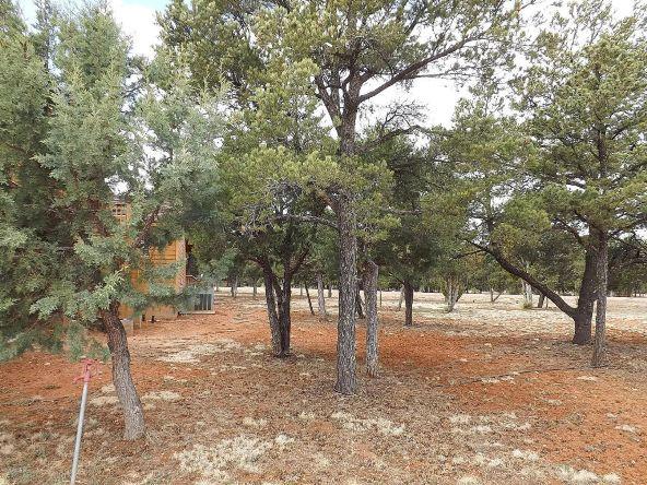 2318 Kitfox Cir., Overgaard, AZ 85933 Photo 14