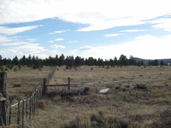3460 E. Mountain Man Trail, Williams, AZ 86046 Photo 11