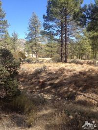 Home for sale: 0 Table Mountain Rd. -Lot 20, Mountain Center, CA 92561