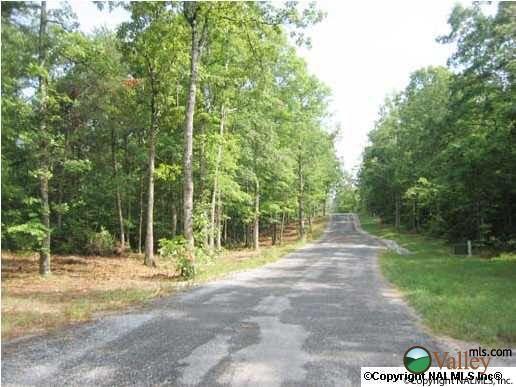 1 County Rd. 935, Mentone, AL 35984 Photo 5