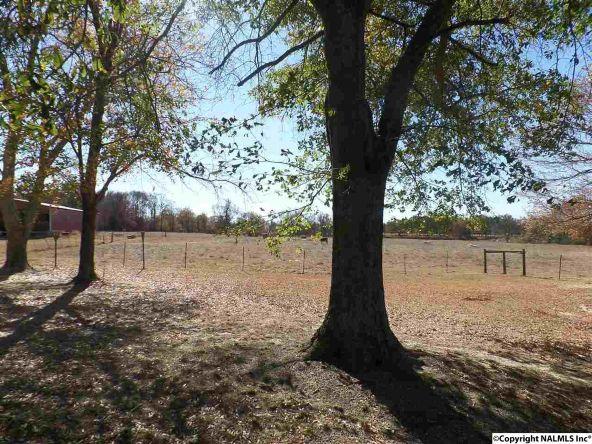 11 County Rd. 317, Dawson, AL 35963 Photo 34