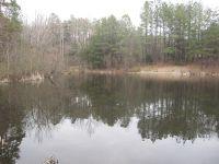 Home for sale: 10 Acres Chestnut Rd., Nathalie, VA 24577