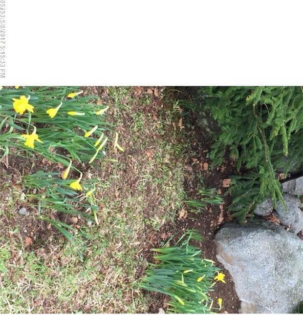 0000 Peninsula Rd., Dennysville, ME 04628 Photo 27