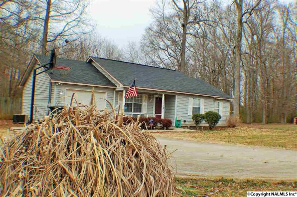 178 Guy Wilson Rd., Hazel Green, AL 35750 Photo 2