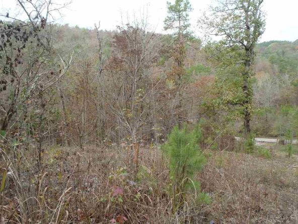 108 Buckthorn, Mountain Pine, AR 71956 Photo 8
