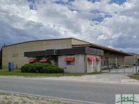 Home for sale: 248 Hardman Rd., Hinesville, GA 31313
