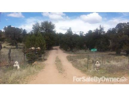 311 Seeley, Young, AZ 85554 Photo 2