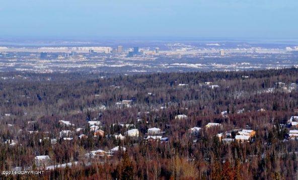 L14 B6 Manorwood Pointe Cir., Anchorage, AK 99516 Photo 1