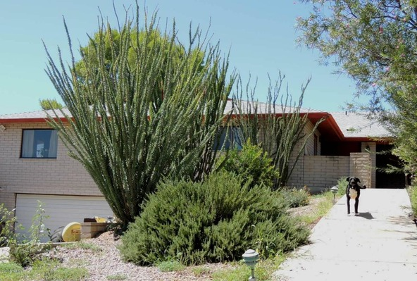 13303 S. Desert Dawn, Pearce, AZ 85625 Photo 57
