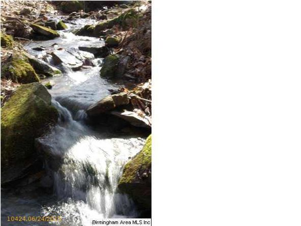 4 Horton Mill Rd., Oneonta, AL 35121 Photo 43