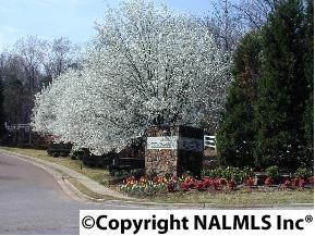 10132 Skylark Dr., Huntsville, AL 35803 Photo 4