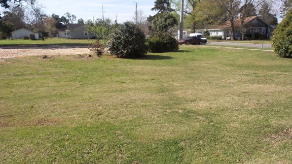 305 Presley St., Atmore, AL 36502 Photo 8