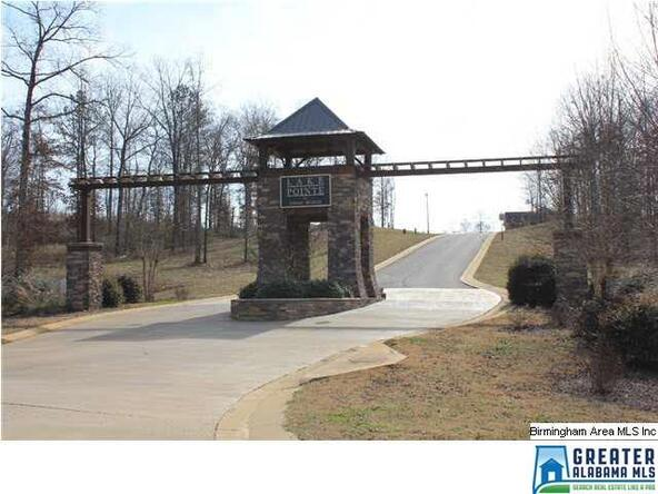 90 Overlook Ridge, Lincoln, AL 35096 Photo 6