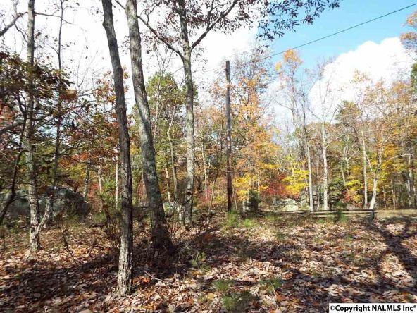 195 County Rd. 844, Mentone, AL 35984 Photo 8