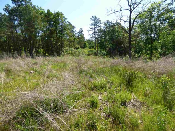 12 Ac Charlie Stover Rd., Royal, AR 71968 Photo 5
