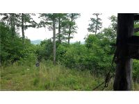Home for sale: 1825 High Peak Rd., Hendersonville, NC 28739