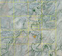 Home for sale: 36699 S. Papalote Wash, Arivaca, AZ 85601