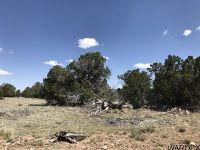 Home for sale: Lot 905 Sierra Verde Ranch, Seligman, AZ 86337