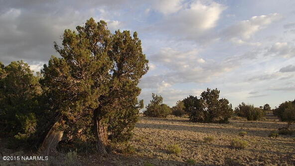 2140 W. Quiet Antelope Ct., Williams, AZ 86046 Photo 11