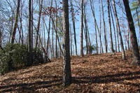 Home for sale: Lot 11 Ivory Bill Way, Salem, SC 29676