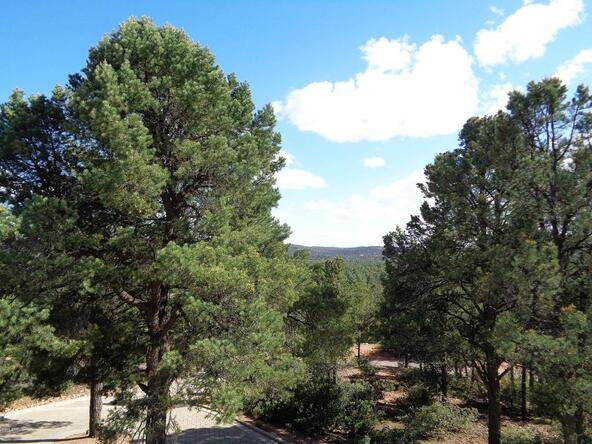 1406 E. Tranquility Point, Payson, AZ 85541 Photo 43