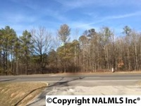 Home for sale: 0 Chestnut Bypass, Centre, AL 35960