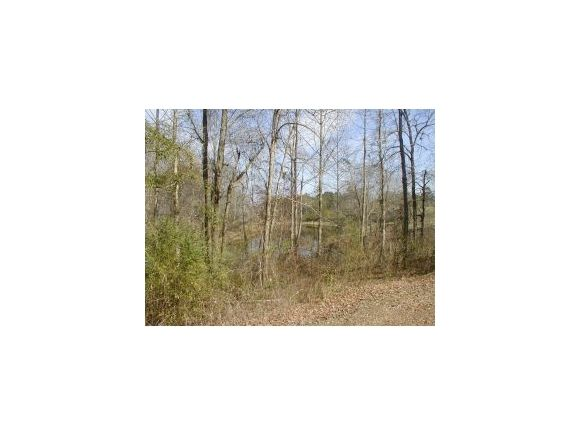 3641 County Rd. 601, Hanceville, AL 35077 Photo 19
